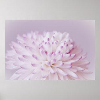 Fotografia Pastel macia da flor Poster