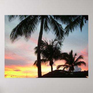 Fotografia tropical da paisagem das palmas do por póster