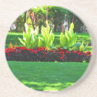 Fotografia verde da natureza de Boston EUA América Porta Copos De Arenito
