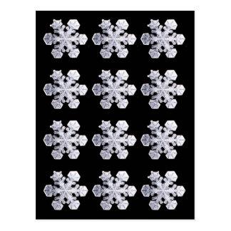 Fotos do cristal do floco de neve cartão postal