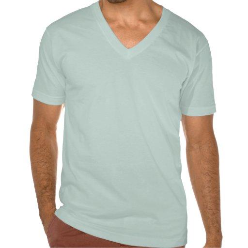 fotos t-shirt