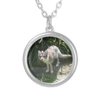 Fox de ilha psto em perigo colar com pendente redondo