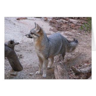 Fox do deserto cartão comemorativo