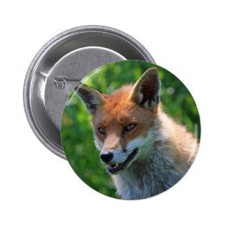 fox o botão bonito vermelho do retrato da foto, pi bóton redondo 5.08cm