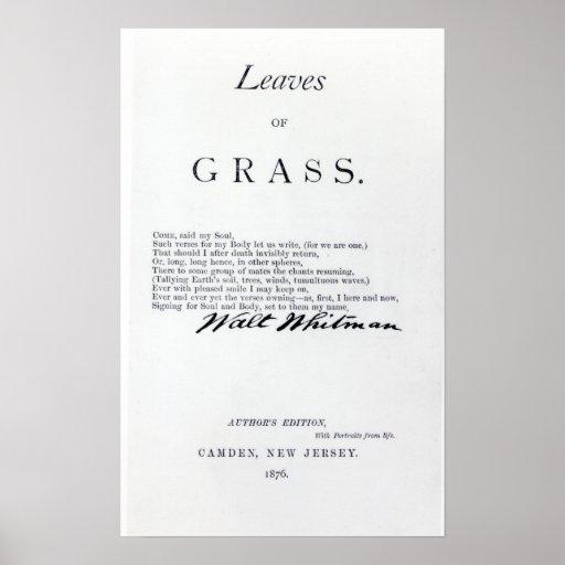 Frontispiece 'às folhas das gramas impressão