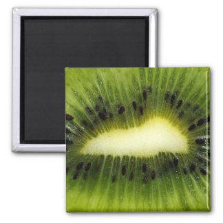 Fruta de quivi ímã quadrado