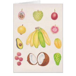 Frutas 2 cartão comemorativo