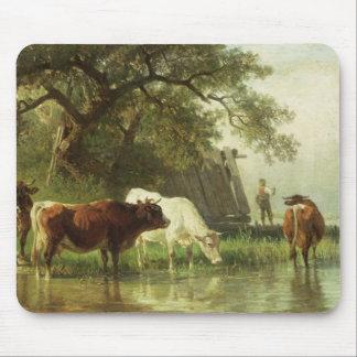 Gado que molha em uma paisagem do rio mouse pads