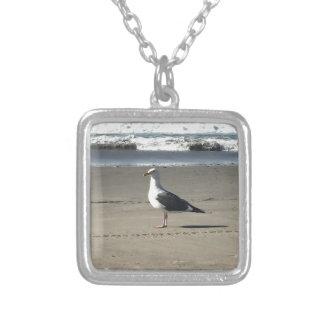 Gaivota na praia colar banhado a prata