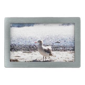 gaivota pelo oceano na imagem da praia