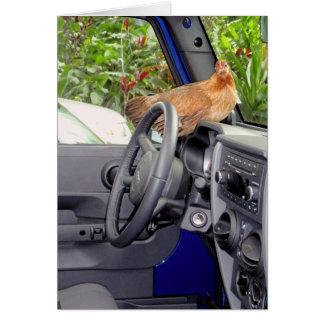 Galinha em um carro! cartão