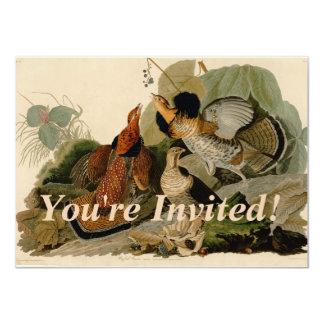 Galo silvestre de Audubon Ruffed Convite 11.30 X 15.87cm