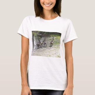 Gansos T-shirts