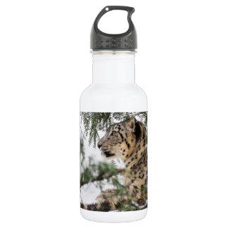Garrafa D'água Leopardo de neve sob Bush nevado