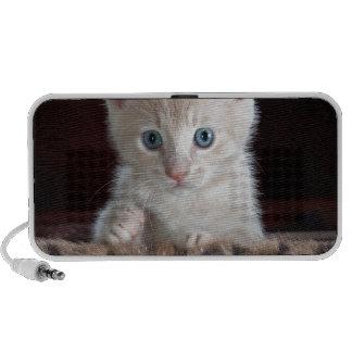 Gatinho bonito super com olhos bonitos caixinhas de som para notebook