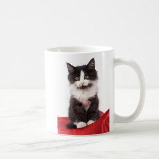 gatinho caneca de café