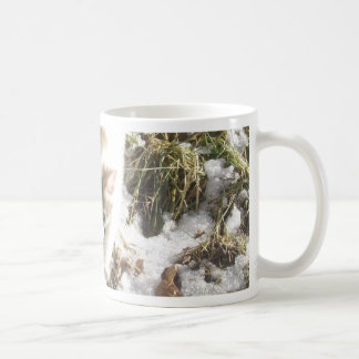 Gatinho do inverno caneca de café