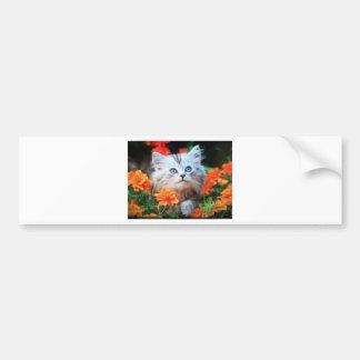 gatinho em flores alaranjadas adesivos