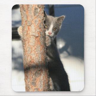 Gatinho em uma árvore Mousepad