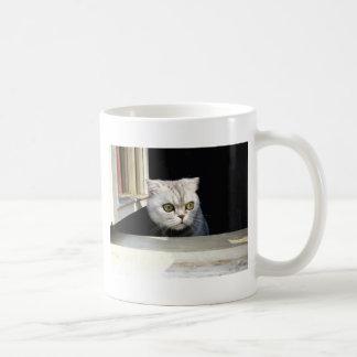 Gatinho engraçado caneca de café