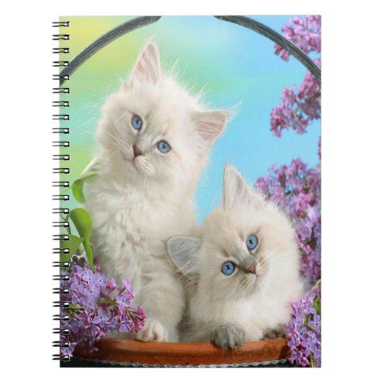 Gatinhos bonitos cadernos espiral