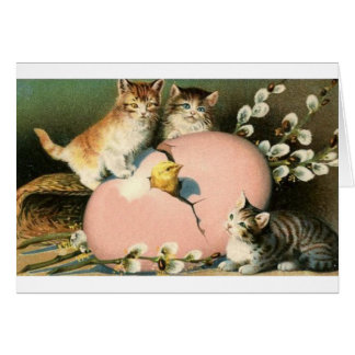 Gatinhos do Victorian e choque do cartão de páscoa