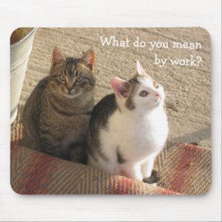 Gatinhos engraçados bonitos - mouse pad
