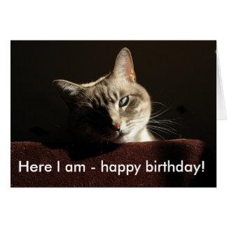 Gato: Aqui eu sou - feliz aniversario! Cartão Comemorativo