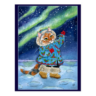 Gato bonito, cartão da aurora boreal