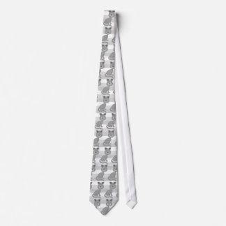 Gato cinzento gravata