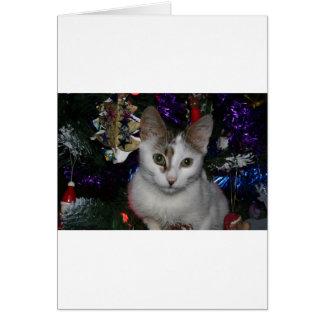Gato da árvore de Natal Cartão Comemorativo