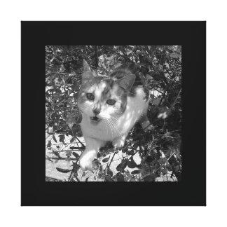Gato de Fangy na arte da árvore/canvas