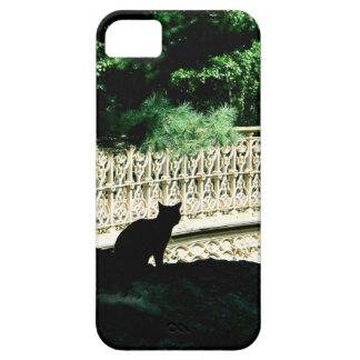 Gato do Central Park Capa De iPhone 5 Case-Mate