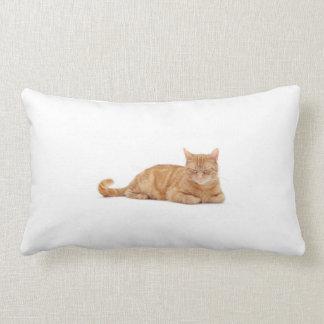 Gato do gengibre almofada lombar