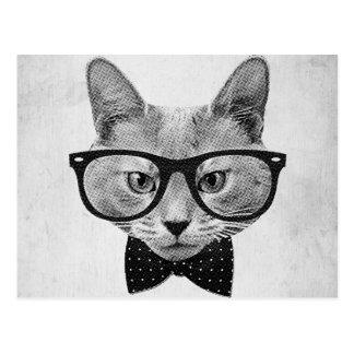 Gato do hipster do vintage cartão postal