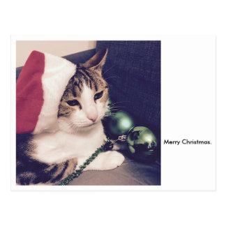 Gato do Natal Cartão Postal