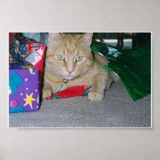 Gato do Natal Pôster