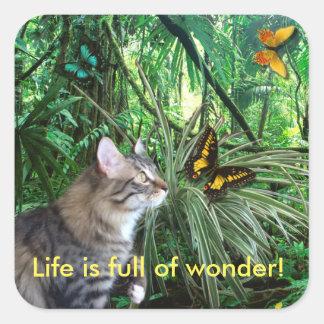 Gato em etiquetas da selva