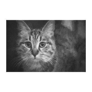 Gato em preto e branco impressão em tela