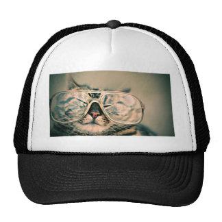 Gato engraçado com vidros boné