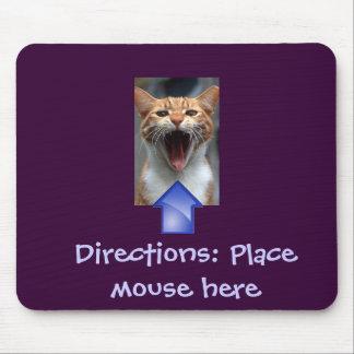 Gato engraçado e Mousepad