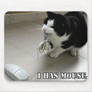 Gato engraçado MousePad