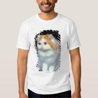 Gato Eyed e bonito da laranja T-shirt