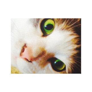 Gato Eyed verde-claro Impressão Em Tela