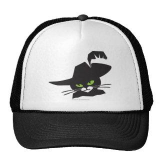 Gato preto boné