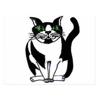 Gato preto e branco carnudo cartão postal