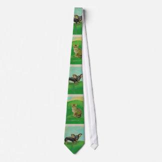 Gatos e cães dos animais de estimação originais da gravatas