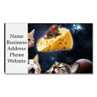 Gatos e o rato no queijo