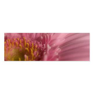 Gerbera cor-de-rosa • Cartão de visita do Web site