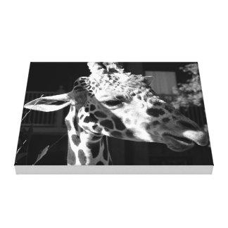 girafa impressão de canvas envolvidas